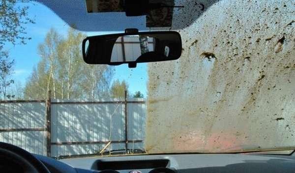 Химчистка салона автомобиля своими руками в 7 этапов: средства, рекомендации и подробная инструкция